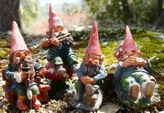 Hmmm, not sure if I should go with gnomes or hobbits for my minigarden