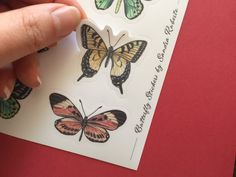 Butterfly sticker sheet | Etsy  #stickers #stickersheets #sticker #etsy #etsyshop #butterfly #butterflies #illustration #stationery Vinyl Paper, Plant Illustration, Stationery, Butterfly, Hand Painted, Colours, Etsy Shop, Illustrations, Stickers