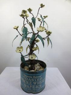 Barbed Wire Flowering Shrubbery With Pale Yellow Flowers in vintage National Biscuit Tin.  It will life forever!