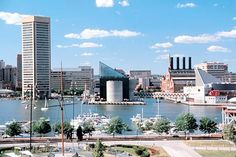 Inner Harbor, Baltimore - one of my favorite places - anytime of year - be sure to ride the water taxi and visit the National Aquarium