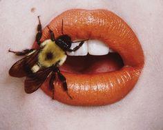 Kiss my bee Chiara Bautista, Bee Drawing, Cool Makeup Looks, Orange Twist, Black And White Posters, Arte Sketchbook, Bullet Journal Art, Bee Art, Eye Photography