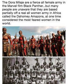 Real life Amazons -where Wakanda's royal guards came from