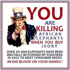Elephant Advocacy: U.: Stop Importing and Buying Ivory! Ivory Trade, Save The Elephants, African Elephant, How To Take Photos, Sad, Travel, Free, Viajes, African Bush Elephant