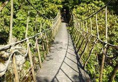 Những lưu ý khi tham quan bằng Cầu Treo  Được coi là điểm tham quan yêu thích của các khu du lịch trên cả nước như Sapa, Tam Đảo, Đà Lạt, nhưng cầu treo cũng tiềm ẩn nhiều nguy cơ mà du khách không nên chủ quan.