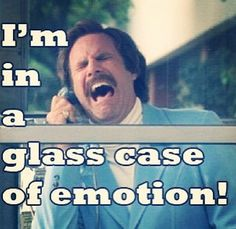 I really really love anchorman. More than I love lamp and afternoon delight