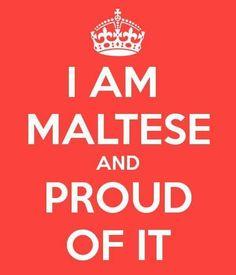 Visit the post for more. Malta History, Malta Valletta, Malta Island, Maltese Dogs, Little Island, Sicily, Homeland, Places, Islands