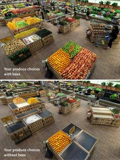 To prove a point, Whole Foods in Providence, RI temporarily removed all produce dependent on pollinators.