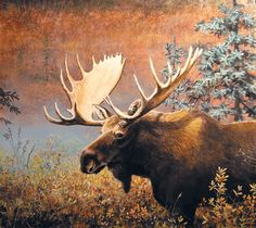 jerry yarnell paintings of moose and elk - Yahoo Image Search Results