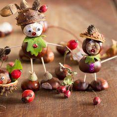 Hledáte inspiraci na podzimní tvoření s dětmi? Zkuste veselé postavičky z kaštanů a jiných podzimních plodů! Na Prošikulky.cz najdete tipy, jak je vyrobit. Diy And Crafts, Crafts For Kids, Arts And Crafts, Conkers, Acorn, Fall Decor, Autumn, Fruit, Pictures