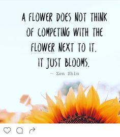 garden quotes 33 Inspirational Sunflower Q - garden Great Quotes, Quotes To Live By, Me Quotes, Inspirational Quotes, Sunflower Quotes, Sunflower Print, Hippie Quotes, Senior Quotes, Garden Quotes