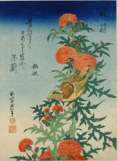 Title:鵙 小薊(いすか おにあざみ) Shrike and Blessed Thistle (Mozu, oniazami), from an untitled series known as Small Flowers