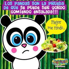 Aunque el panda coma ensalada, Panda se queda !!!