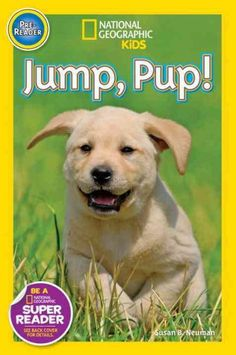 Introduces puppies to young readers using simple, repetitive text and photographs, including senses and play activities.