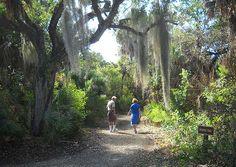 Cayo Costa trail