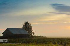 Misty Fields by JukkaHeinovirta  weather Beauty In Nature Distant Environment Matkaniva Oulainen Outdoors Rural Scene autumn barns cl