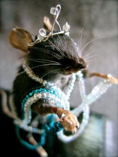 """""""Feeling Fancy"""" Gemma the taxidermy mouse A Cinderella Story, Storybook Cottage, Costume Collection, All Gods Creatures, Fairy Godmother, Memento Mori, Storyboard, Fairy Tales, Kittens"""