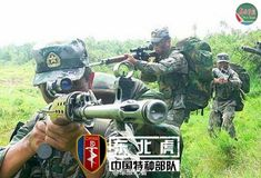 Siberian Tiger, one of the 'Top 12 special forces of the Chinese military' by China.org.cn18/12/14