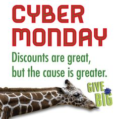 It's #CyberMonday at Zoo Atlanta! Visit zooatlanta.org to see today's deals.
