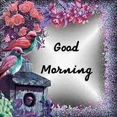 Good Morning Pictures 2018 In Hindi Punjabi English - Whatsapp Images Gud Morning Images, Good Morning Flowers Pictures, Funny Good Morning Messages, Latest Good Morning Images, Good Morning Beautiful Images, Good Morning Picture, Good Morning Good Night, Morning Pictures, Morning Pics
