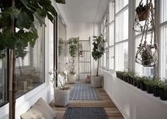 Green home with an i