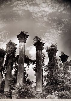We visited the Windsor ruins while riding the Natchez Trace. It's almost surreal. I can't fathom how big the plantation was.