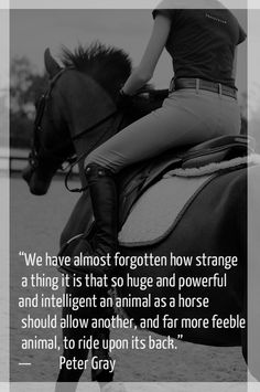"""We have almost forgotten how strange a thing it is that so huge and powerful and intelligent an animal as a horse should allow another, and far more feeble animal to ride upon its back."""