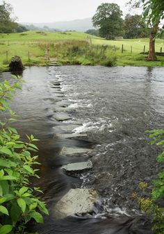 a country stream, so pretty and peaceful