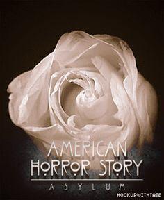 AHS: Asylum - american-horror-story Fan Art