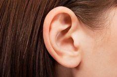 5 natuurlijke remedies tegen tinnitus -  Tinnitus is een hinderlijke fluittoon, die maar niet weggaat. Ginkgo biloba: Het werkt op tal van terreinen, maar verbetert vooral de bloedcirculatie. Laten mensen met tinnitus dit nu goed kunnen gebruiken! Op de een of andere manier is de doorbloeding vaak verstoord in het oor, waardoor de fluittoon kan opspelen. Je kunt ook beter geen koffie drinken. Koffie vernauwt de bloedvaten en kan tinnitus dus in de hand werken. Zie verder >>>