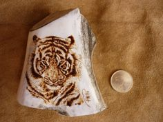 Tiger pyrography on deer antlers