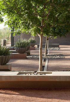 ASLA 2012 / Ландшафтный дизайн и благоустройство Политехнического кампуса Государственного Университета Аризоны