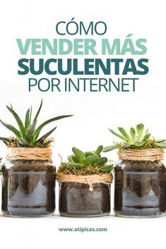 Consejos para vender suculentas por internet. Tips, recomendaciones, trucos para vender más suculentas y cactus. Cactus Y Suculentas, Mini, Wood Projects, Succulents, Internet, Flowers, Plants, Gardening, Gardens