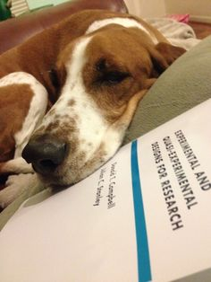Dugan disapproves of research designs