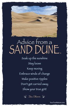 Advice from a Sand Dune - Postcard - Your True Nature