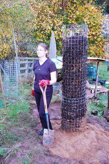^^  Starting from Scratch: Vertical Gardening