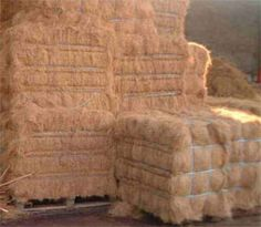 Find great deals on roycefood for Coconut Fiber. Royce Food set-up it coconut coir factory to process these waste products into exportable coconut fiber.