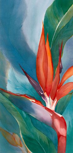 BËÄŮȚÏ₣ŮĻ found in South Africa..... Strelitzia flower.............Jeanne Bonine WATERCOLOR