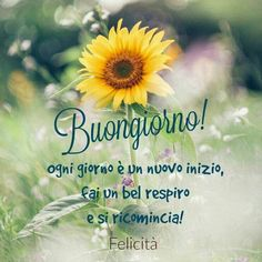 http://ift.tt/2w3ieEZ Frasi di buongiorno sms di buongiorno messaggi di buongiorno buongiorno per te bongiorno per whatsa