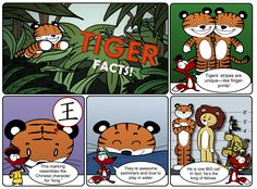 Tiger Facts - I bet you didn't know some of these cool things about this big cat! Storyboard Software, Animation Storyboard, Tiger Facts, Kids Zone, Chinese Characters, Fun Activities For Kids, Big Cats, Tigers, Parents