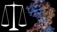 Contestations between Science and Law in the Legal System – II | Different Truths