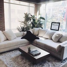 Cozy Grey Living Room - Interior Design Ideas- Fluffy Rug- Plants