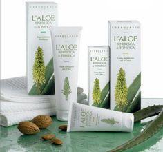 Perfumed Body Creams & Shower Gels - Aloe