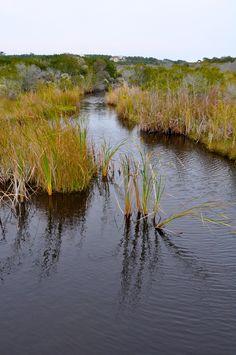 Creek in Pawleys Island