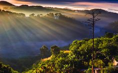 Light rays in fog by love leica on 500px