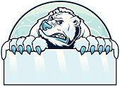 Urso Polar sinal