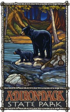 Great Smoky Mountains National Park Black Bears Pa Photographic Print by Paul A… National Park Posters, National Parks, Embroidery Letters, Sequoia National Park, Blue Ridge Parkway, Great Smoky Mountains, Vintage Travel Posters, Black Bear, State Parks