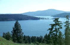Coeur d'Alene, ID. Where I grew up and fell in love with the woods. Oh, or should that be IN the woods. Both, then.