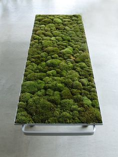 Amazing use of metal and moss to create a stunningly comfortable looking Moss Bench by Kazunaga SAKASHITA, Japan