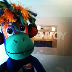 NoMo at Envoy Inc. In Omaha talking some monkey biz. #smacancer
