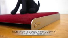 Sunglasses Case, Products, Gadget
